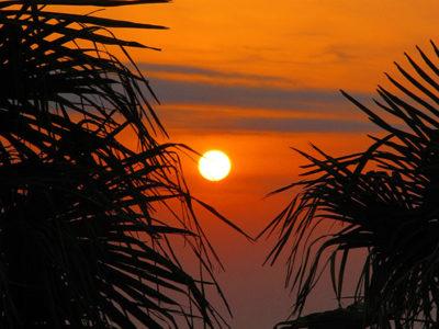 vitrage decoratif insertion visuel coucher de soleil